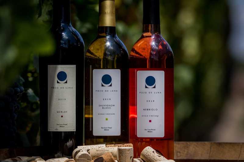 Vinos platillos mexicanos